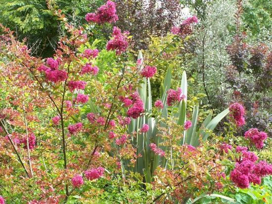 Saint-Mard, Francia: jardin