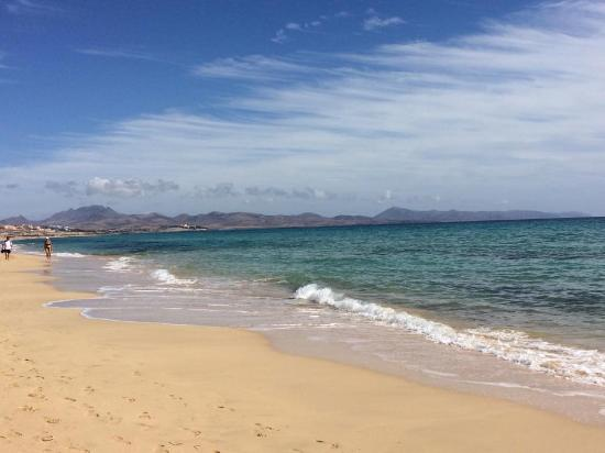 playa - Picture of Playa de Sotavento, Playa de Jandia - TripAdvisor
