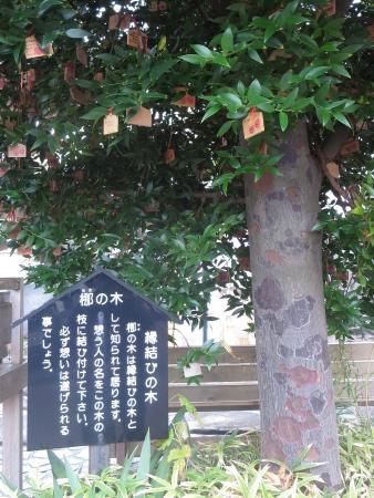 Atagawa Onsen Takaiso no Yu