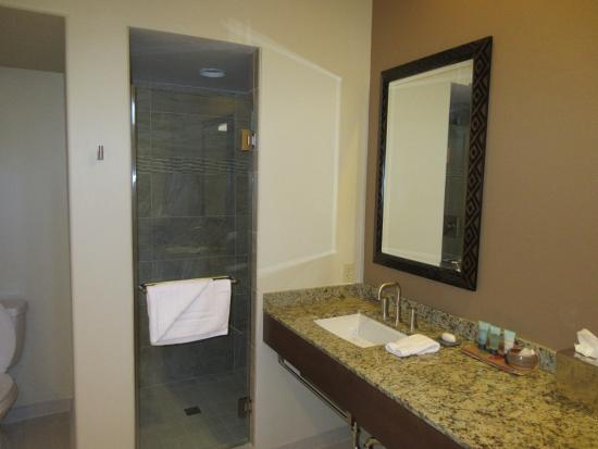 Litchfield Park, AZ: shower stall in spacious bathroom
