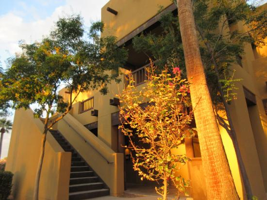 Litchfield Park, AZ: Looking up the stairs toward my room