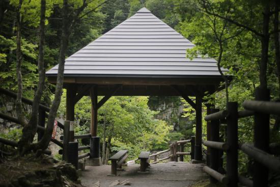 Ashibetsu Japan  city photo : 三段滝公園 Picture of Sandandaki Park, Ashibetsu TripAdvisor