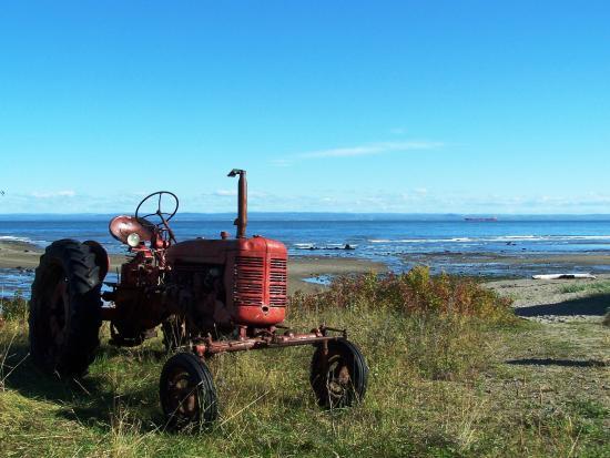 Saint-Irenee, Canadá: La plage de Saint-Irénée, photo de carte postale