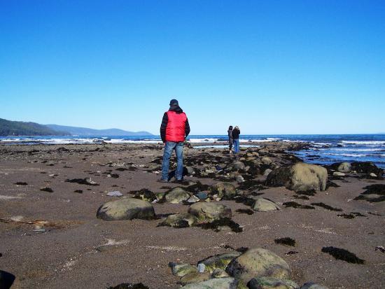 Saint-Irenee, Canadá: La plage de Saint-Irénée, à marée basse, Wow!