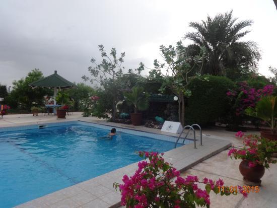 Le Relais: Espace piscine