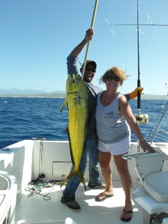 100 tuna picture of pisces sportfishing cabo san lucas for Pisces fishing cabo