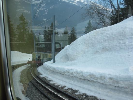 Grindelwald, Zwitserland: 駅の近く