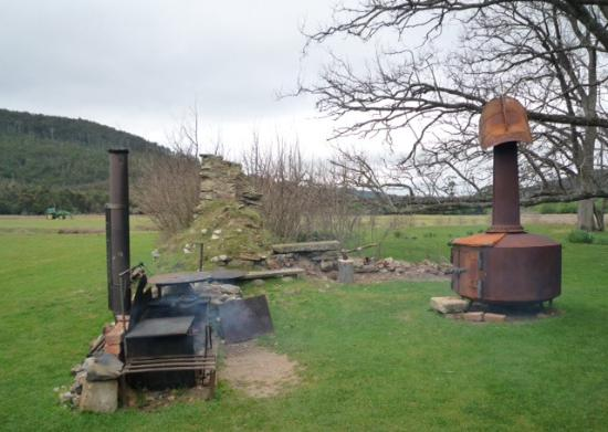 Pepper Bush Adventures - Day Tours: Outdoor dining area