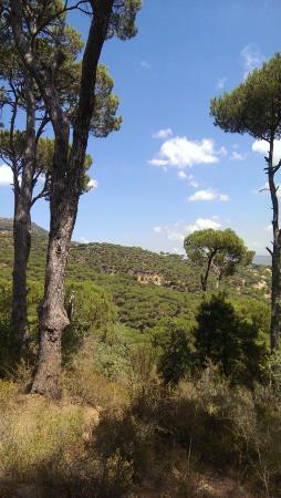 Jezzine, Libanon: View 2