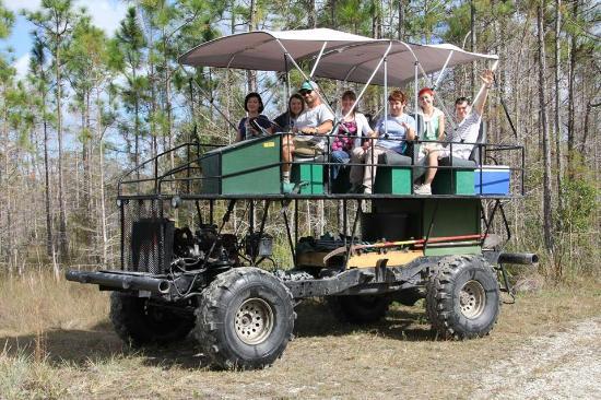 Big Cypress Swamp Tours