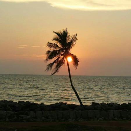 Cup-A-Cabana a Varkala Odayam Beach: Coll