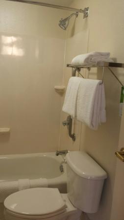 SpringHill Suites Philadelphia Willow Grove : Clean