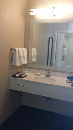 SpringHill Suites Philadelphia Willow Grove : Nice size bathroom space