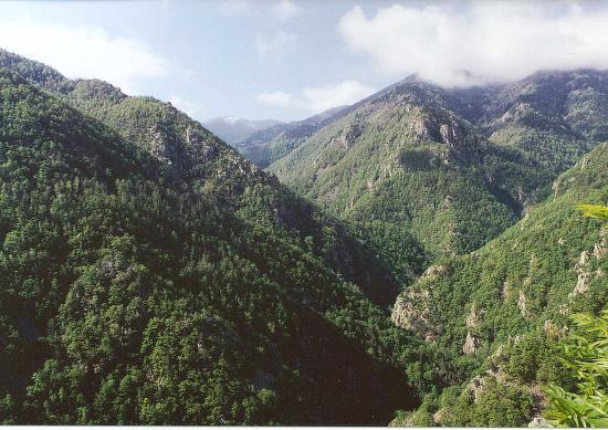 Réserve Régionale de Nyer