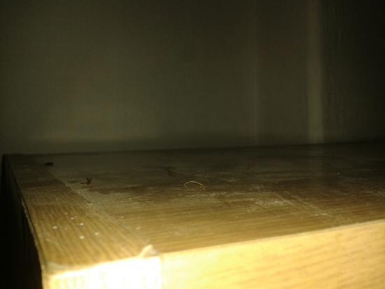 Bruntal, Republika Czeska: Pokoj č. 1 - nánosy prachu na skříni (mimochodem bez dveří)