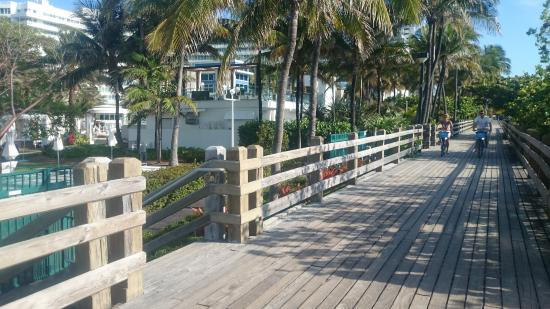 Lexington Hotel - Miami Beach: excelente para caminhada