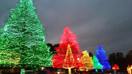 Swan Lake Iris Gardens: Xmas Lights entrance to Swan Lake December months