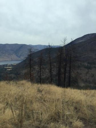 Lake Chelan State Park: Off Road