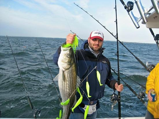 chesapeake bay fishing charters rockfish striped bass