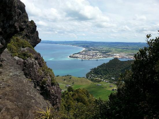 Whangarei, Nueva Zelanda: 20151103_142728(0)_large.jpg