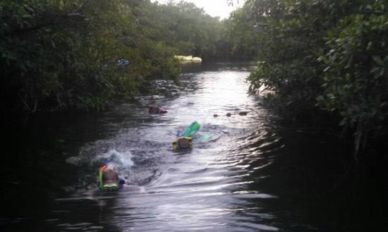 Xbalamque Cabanas Tulum: Snorkeling in the cenote