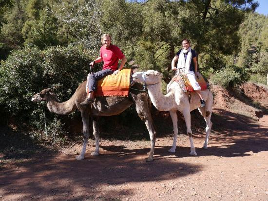 Moroccan Trails - Private Tours: IMG-20151101-WA0028_large.jpg