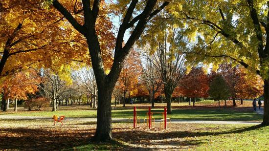 湯姆森紀念公園