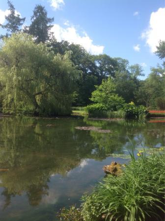 Longstock Water Gardens: photo3.jpg