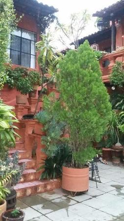 La Mansion Del Bosque: Area hacia las habitaciones