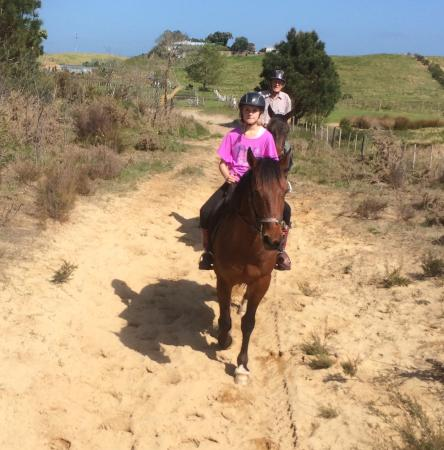 Waipu Horse Adventures