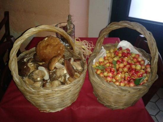 Provincia di Salerno, Italia: Funghi Porcini e Ciliegie