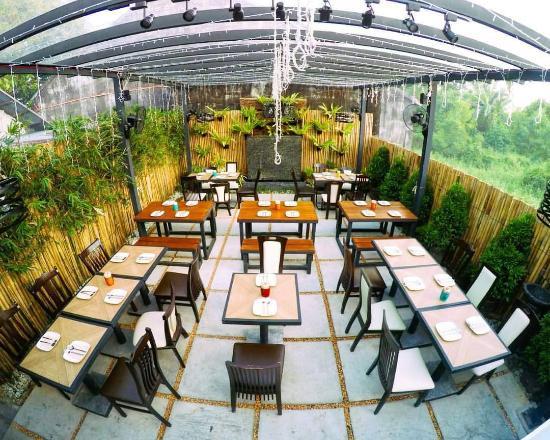 InfinityMeals: Daytime Outdoor Garden Patio