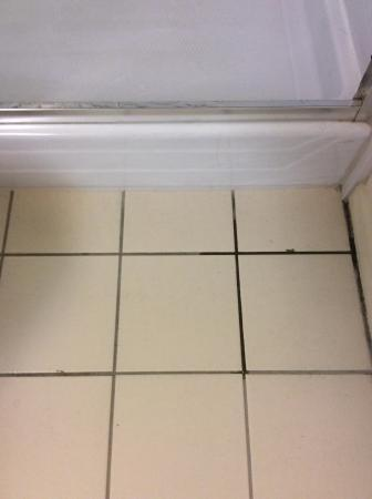 The Hawks Nest: Bathroom floor