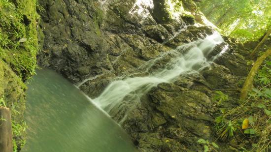 Drake Bay, คอสตาริกา: Tour apto para toda la familia
