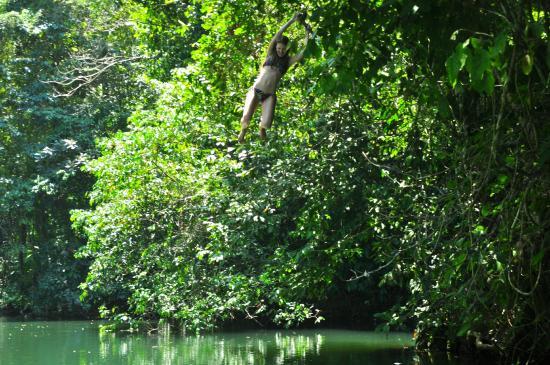 Drake Bay, Kosta Rika: Tirate de una liana