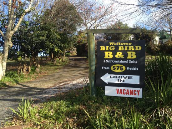 "Waitomo Big Bird Bed & Breakfast: ""Drive In"""