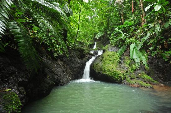 Drake Bay, Costa Rica: Ven a disfrutar de este paraíso terrenal