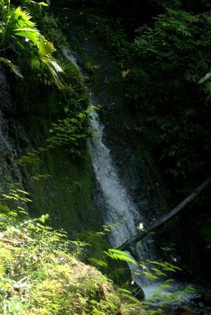 Κόλπος Drake, Κόστα Ρίκα: Cataratas