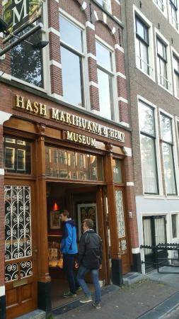 Hash Marihuana & Hemp Museum: 20151102_161508_large.jpg