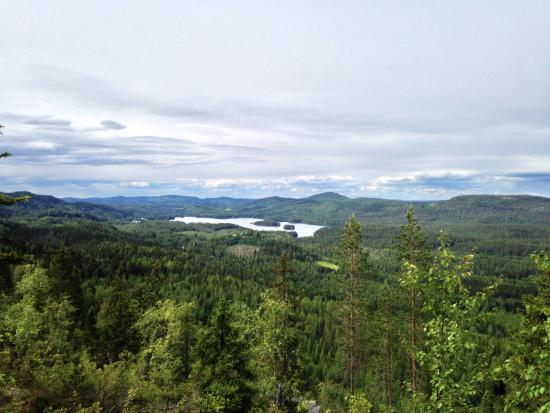 Koli National Park, Finland: View from Ryläys Hill