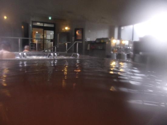 Oberiberi Onsen Suikoen: 浴場の様子