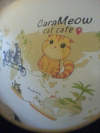 CaraMeow Cat Cafe