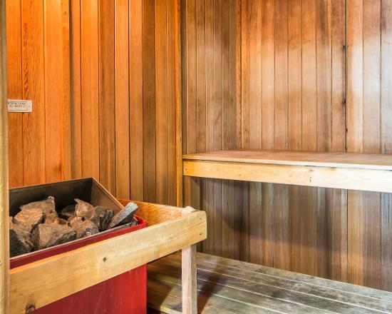Comfort Suites Perimeter Center: Sauna