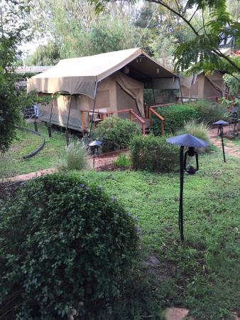 Wildebeest Eco Camp: photo0.jpg