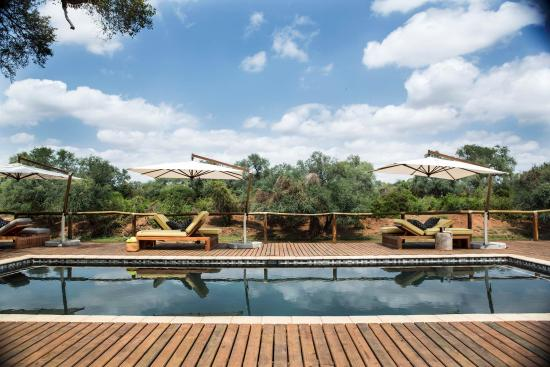 Pafuri Camp Kruger National Park South Africa Campground Reviews Photos Price Comparison