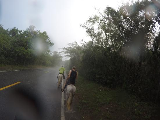 Taxi Horses: Final end of the ride ended with soaking rain, but it was well worth it and soooo much FUN!!!