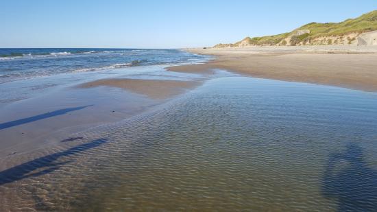 Albaek, Dinamarca: The beach close to the camping