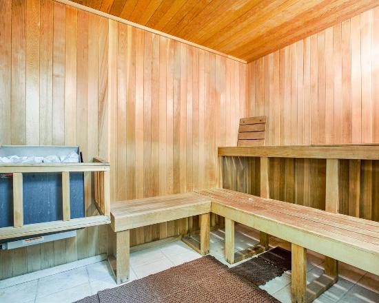 Comfort Inn: Hotel sauna