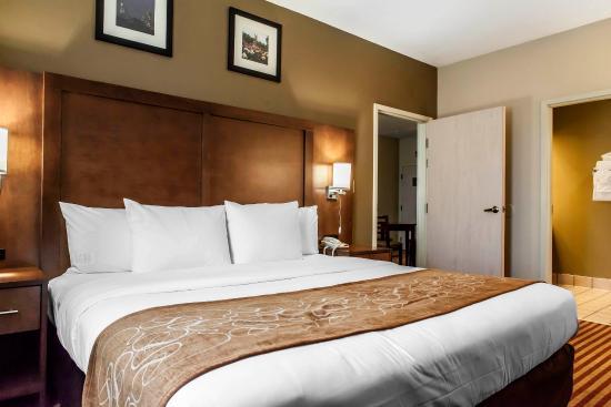 Comfort Suites: Guest Room