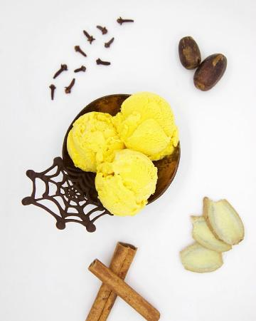 White Chocolate with Cacao Nibs Gelato - Picture of Gelato Secrets ...